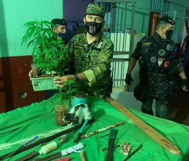 Procurando túnel do PCC, polícia acha armas e até pés de maconha em cadeia