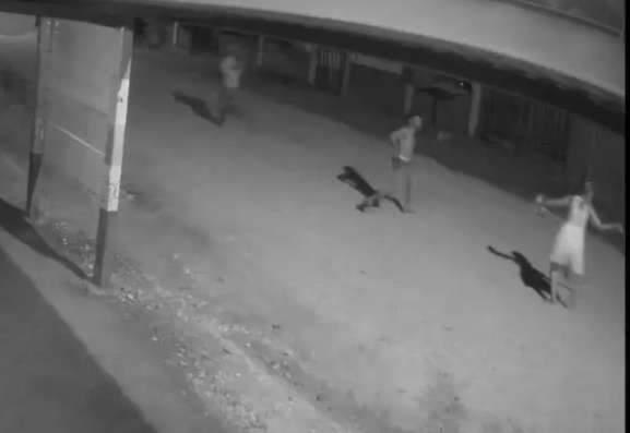 Em depoimento, homem diz que matou mulher a facadas após ser agredido