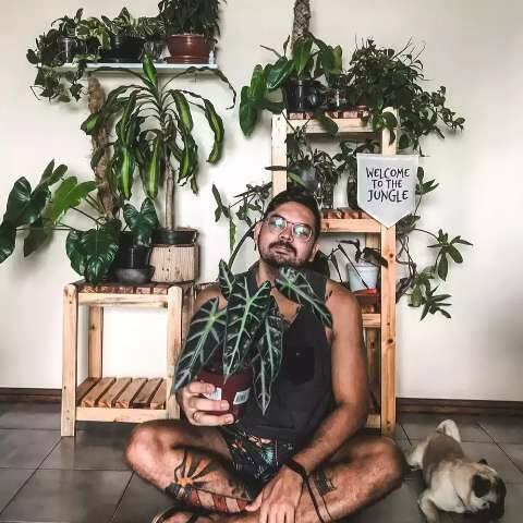 """Marcelo transforma apê de 65 m² em """"selva"""" com mais de 100 plantas"""