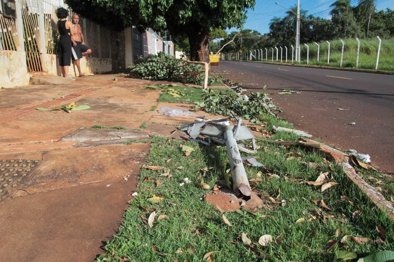 Carro passou por cima de lixeira, árvore pequena e só parou ao bater numa árvore maior (Foto: Marcos Maluf)