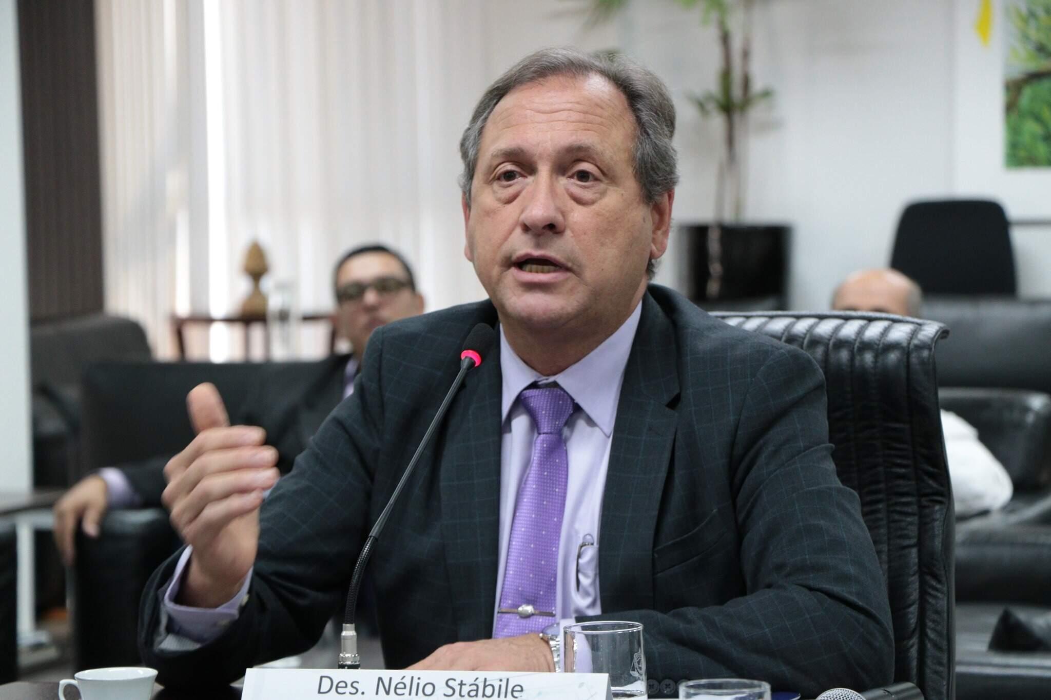 Desembargador Nélio Stábile é coordenador do Comitê Estadual do Judiciário para Saúde.