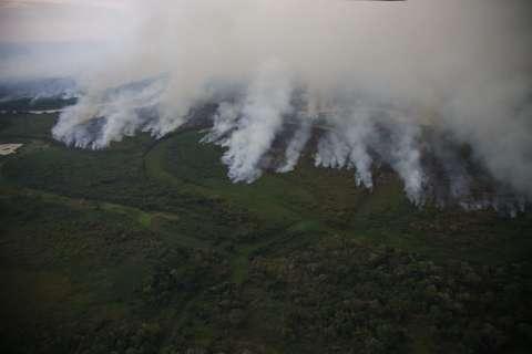 Sesc Pantanal garante que não houve focos de calor iniciados em reserva