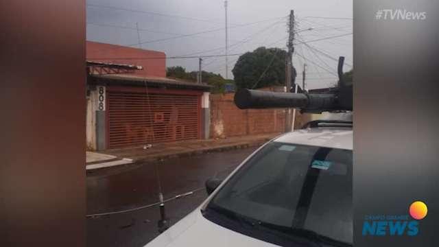 Por causa de ventos fortes, árvore cai no Santa Emília