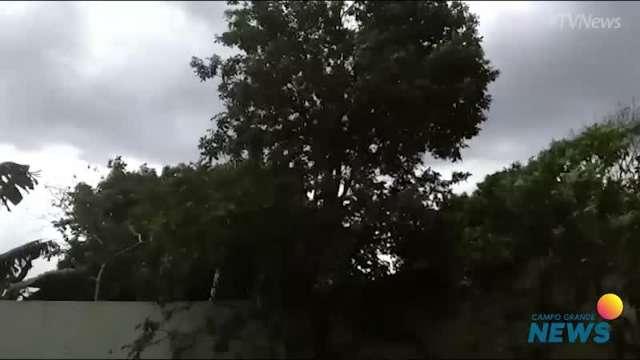 Ventania no Portal da Lagoa